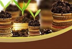 financial services darien il